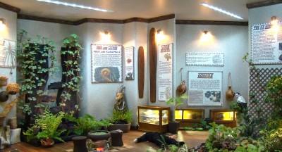 hawaiianmuseum