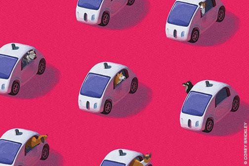 gaz_dogsincars