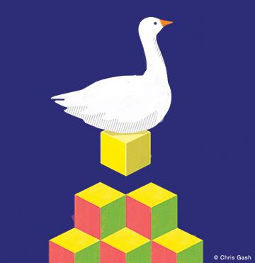 gash-goose