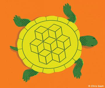 gash-turtle
