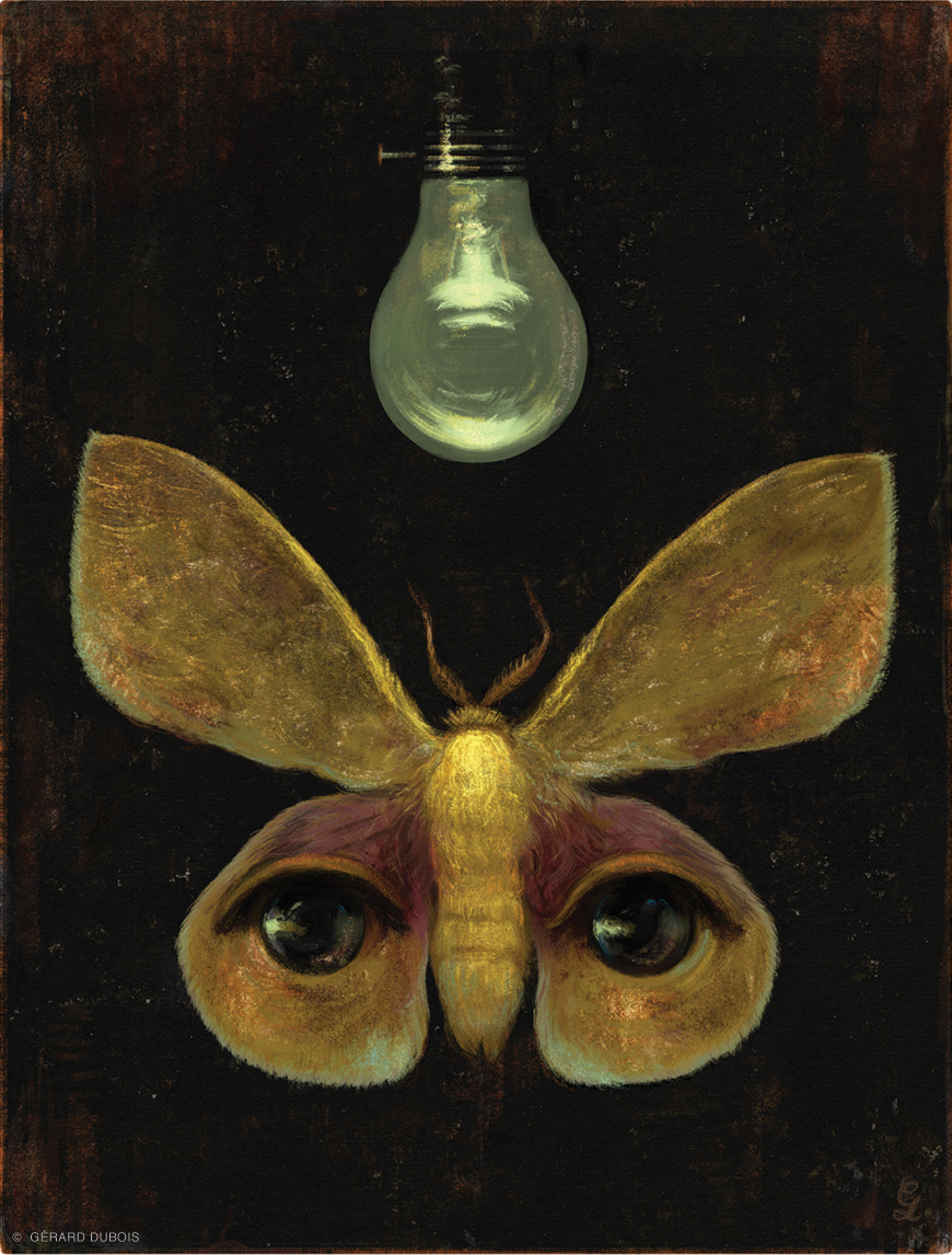 Illustration of a moth with human features and dimmed lightbulb
